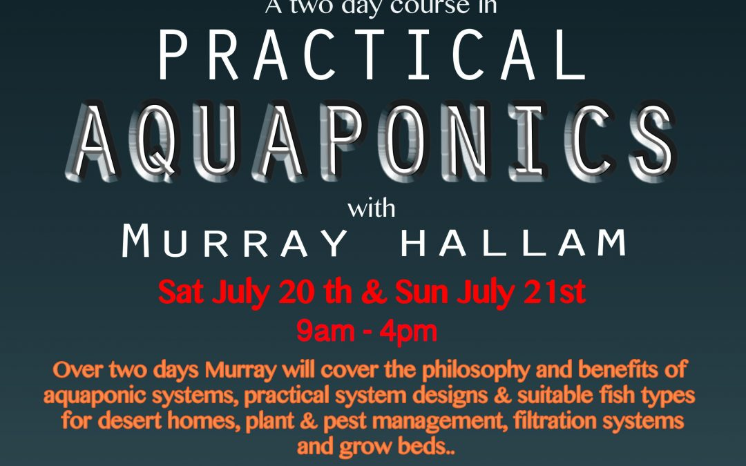 Workshop at the Purple House – Practical Aquaponics with Murray Hallam!!